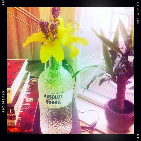 Absolut Lavender